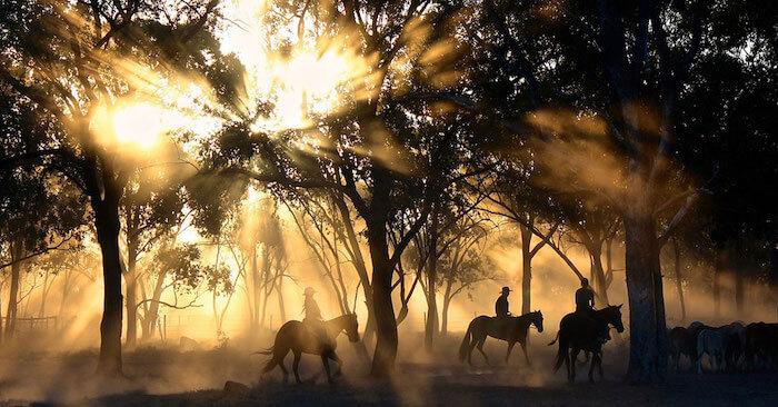 Trekking a cavallo nella Presila